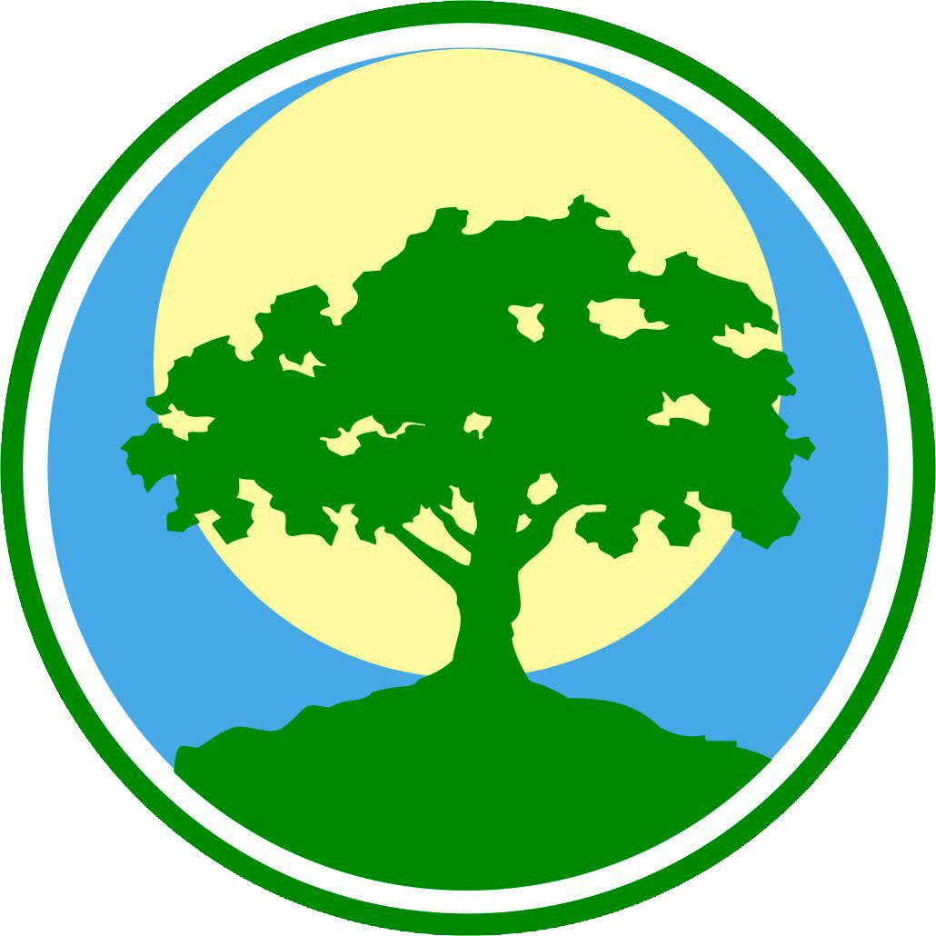 Конкурс на эмблему года экологии